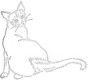 wb-cat2