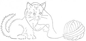 wb-cat5